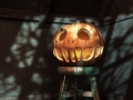 p13_pumpkin_595