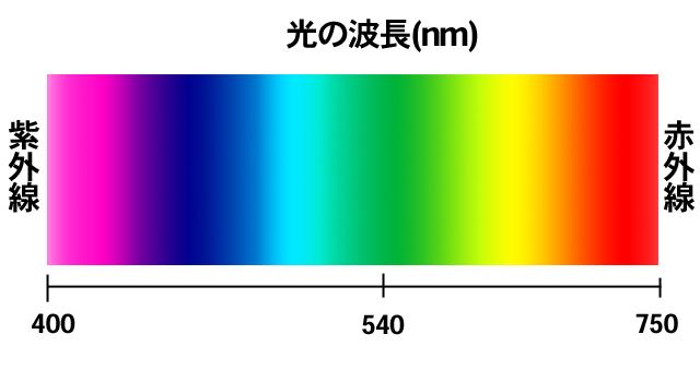 light02_1